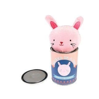 Robyn the rabbit friend in a tin 5609232444290