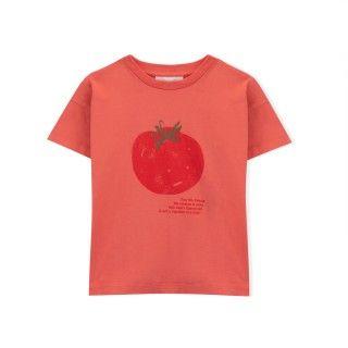 T-shirt manga curta menino algodão orgânico Sr. Tomate 5609232425756
