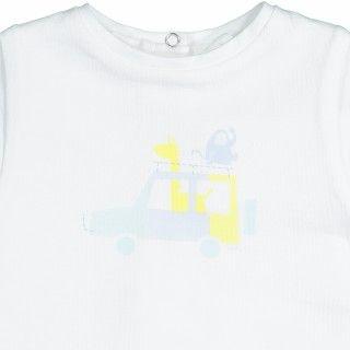 Body Tshirt Safari