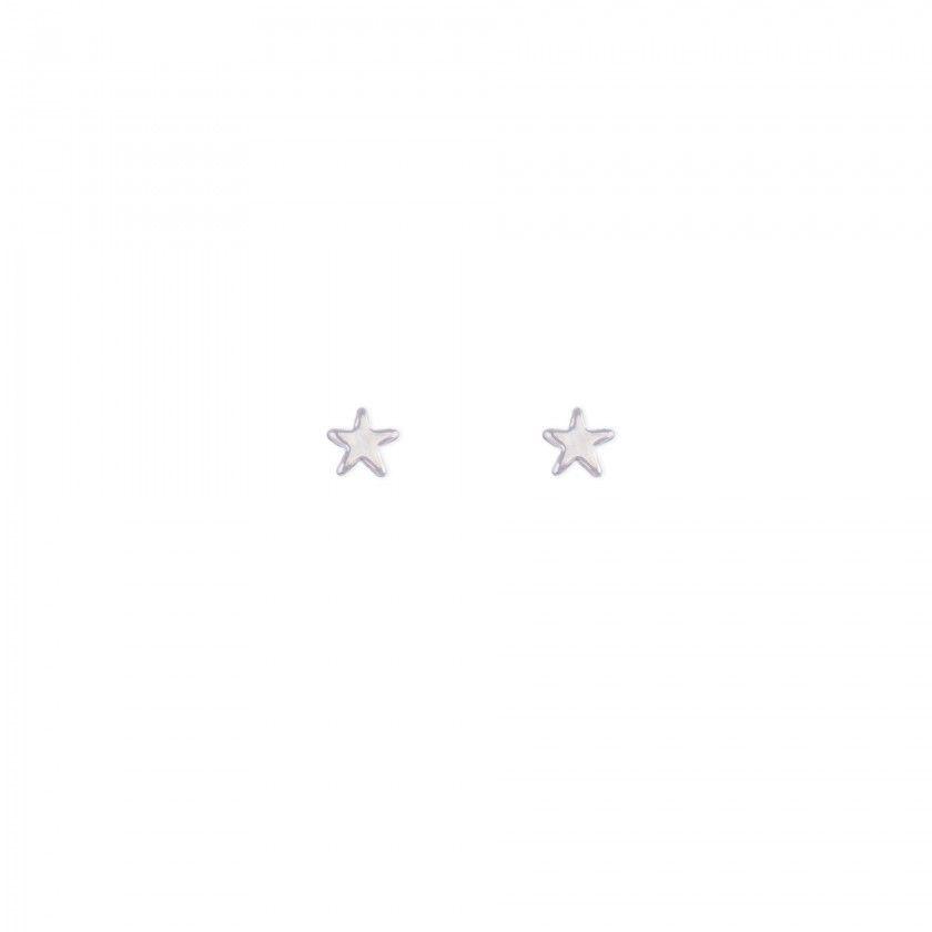 Brincos estrela prateada