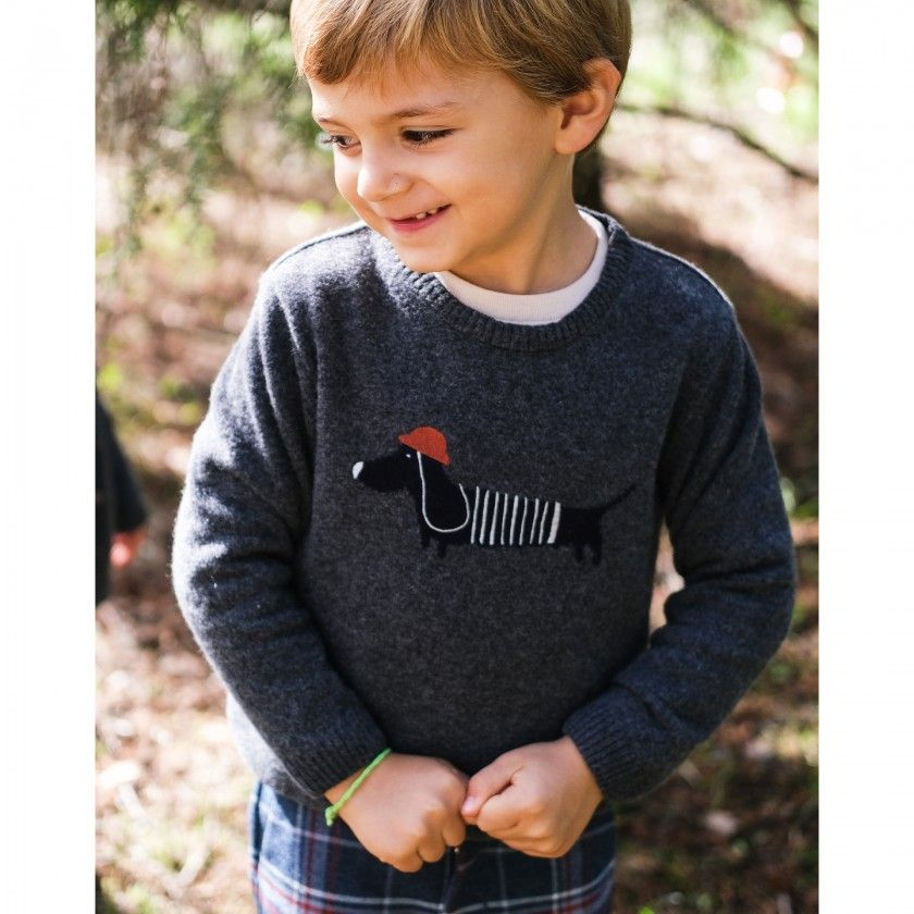 Sweater boy wool Puppy