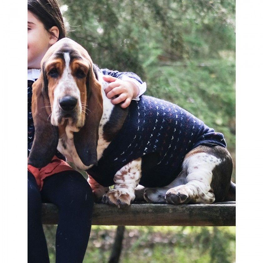 Camisola para cães Daisy