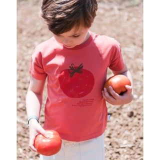 Boy short sleeve t-shirt organic cotton Sr. Tomate